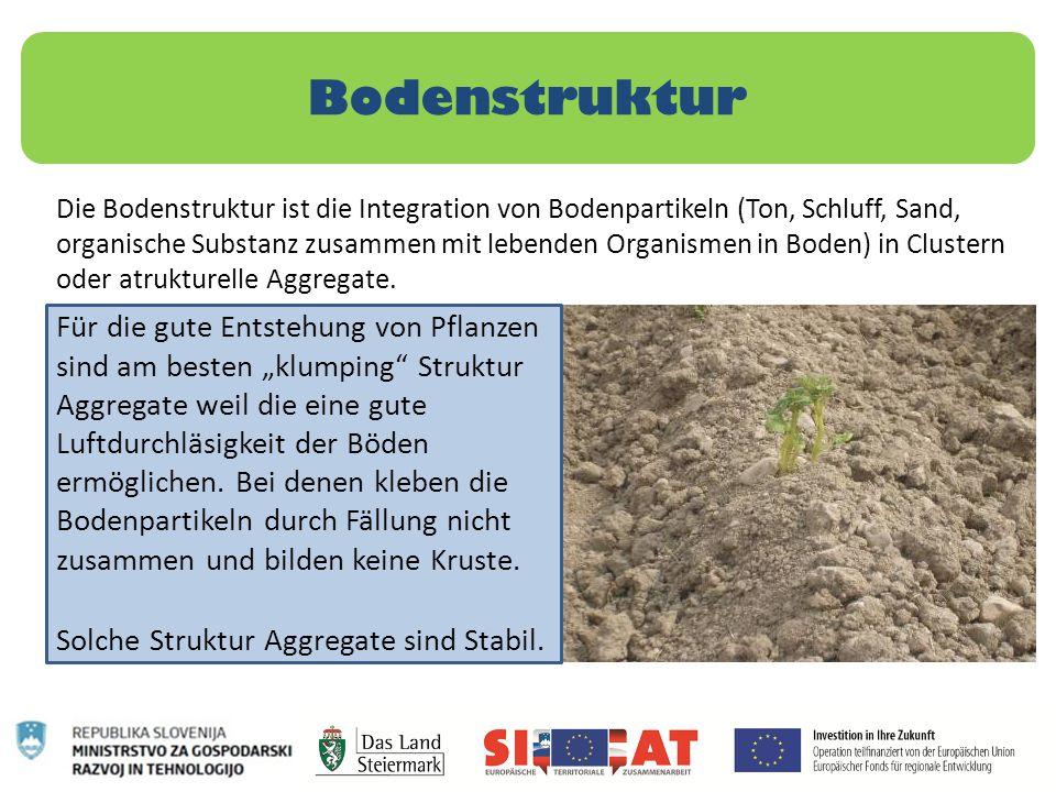 Bodenstruktur Die Bodenstruktur ist die Integration von Bodenpartikeln (Ton, Schluff, Sand, organische Substanz zusammen mit lebenden Organismen in Bo