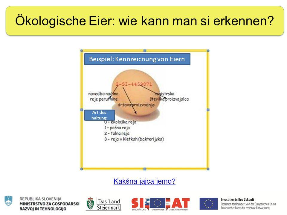 Nachhaltige Ernährung Ökologische Eier: wie kann man si erkennen? Kakšna jajca jemo? Art des haltung: Beispiel: Kennzeicnung von Eiern