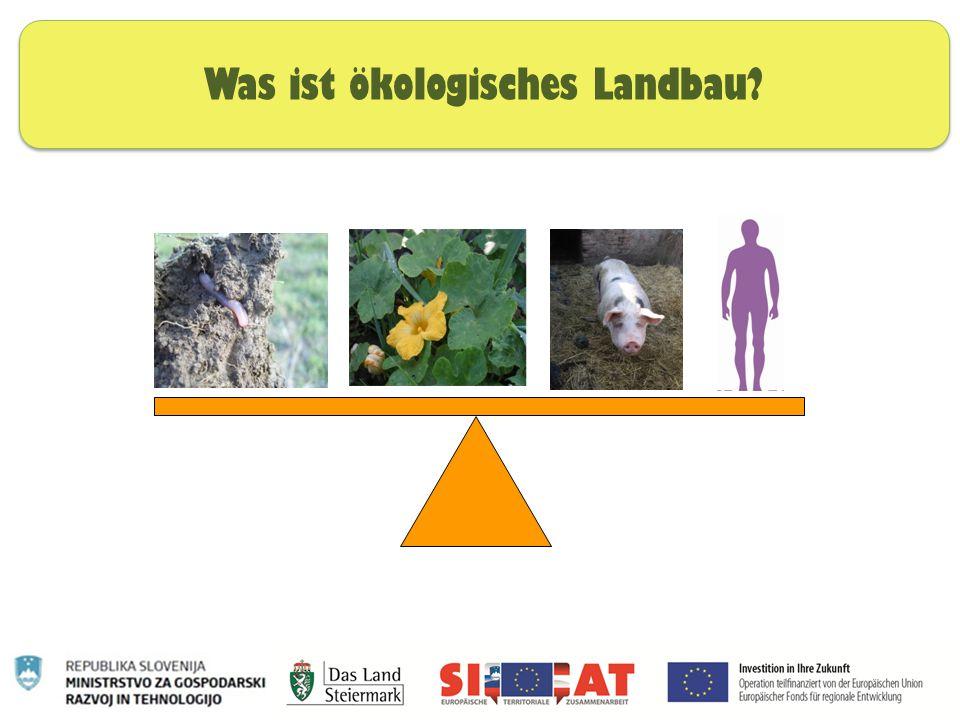 Was ist ökologisches Landbau?