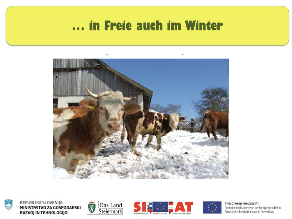 … in Freie auch im Winter