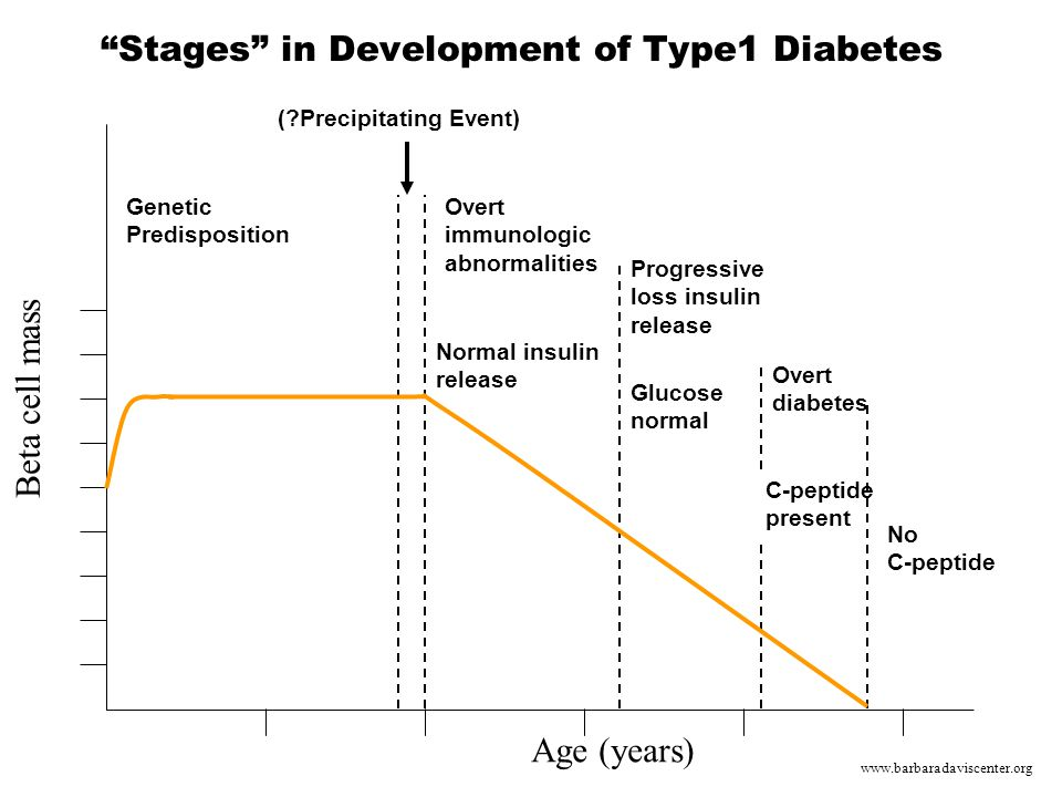 Stages in Development of Type1 Diabetes Age (years) Genetic Predisposition Beta cell mass (?Precipitating Event) Overt immunologic abnormalities Normal insulin release Progressive loss insulin release Glucose normal Overt diabetes C-peptide present No C-peptide www.barbaradaviscenter.org
