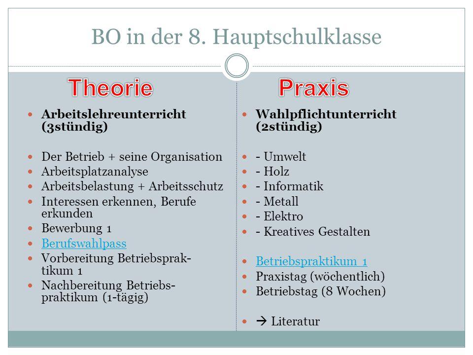 BO in der 8. Hauptschulklasse Arbeitslehreunterricht (3stündig) Der Betrieb + seine Organisation Arbeitsplatzanalyse Arbeitsbelastung + Arbeitsschutz