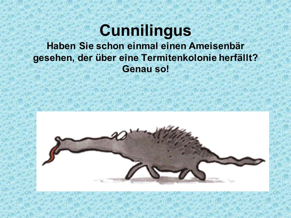 Cunnilingus Haben Sie schon einmal einen Ameisenbär gesehen, der über eine Termitenkolonie herfällt? Genau so!