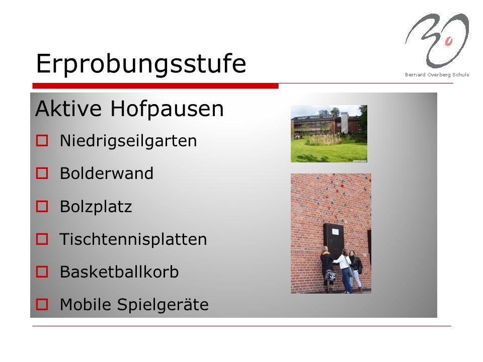 Erprobungsstufe Aktive Hofpausen  Niedrigseilgarten  Bolderwand  Bolzplatz  Tischtennisplatten  Basketballkorb  Mobile Spielgeräte