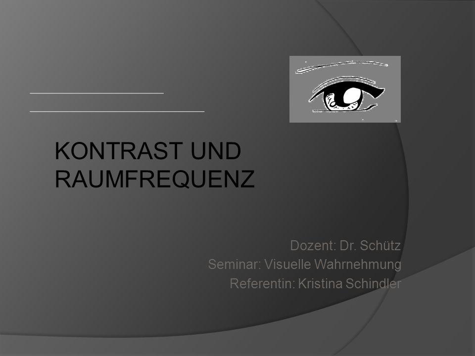 21.08.201412Visuelle Wahrnehmung Kontrastwahrnehmung des Menschen geringe Empfindlichkeit für Streifengitter je größer diese sind  da RF sinkt Abb.8