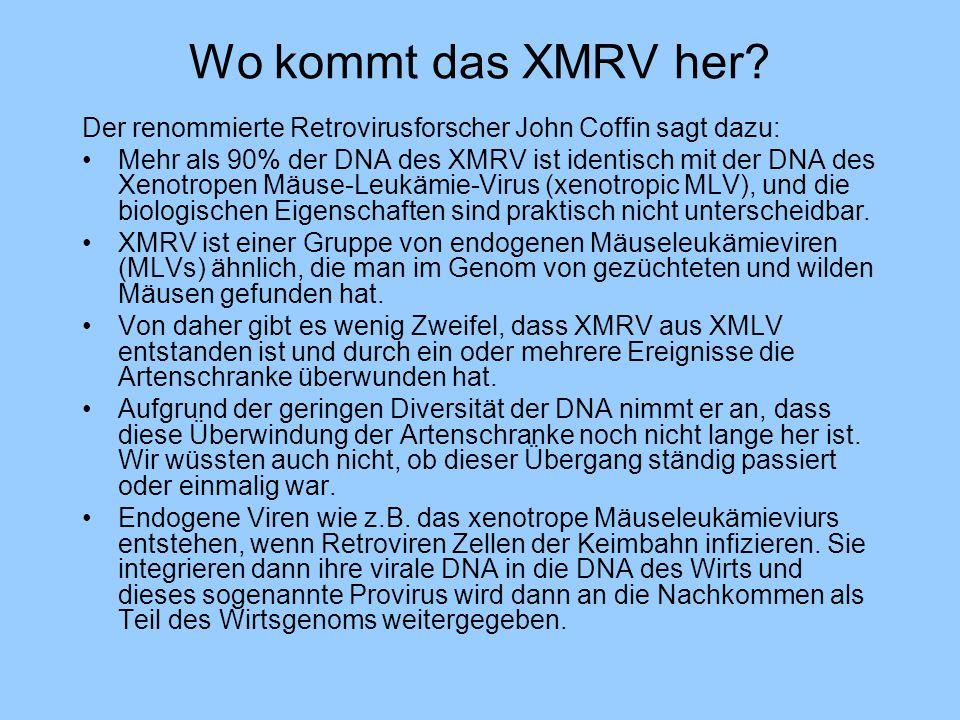 Wo kommt das XMRV her? Der renommierte Retrovirusforscher John Coffin sagt dazu: Mehr als 90% der DNA des XMRV ist identisch mit der DNA des Xenotrope
