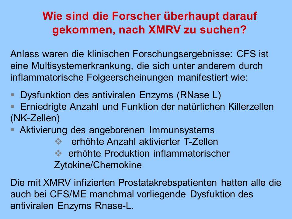 Was ist mit der These, CFS/ME sei eine psychische/depressive/somatoforme Erkrankung.