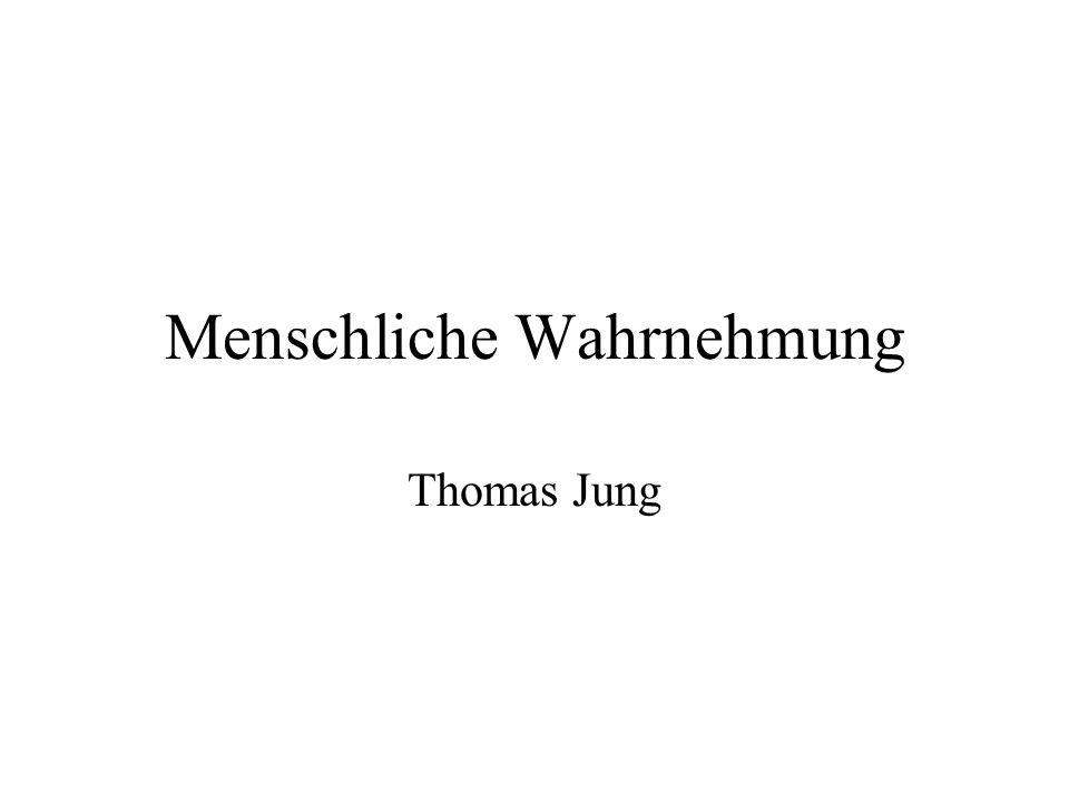 Menschliche Wahrnehmung Thomas Jung