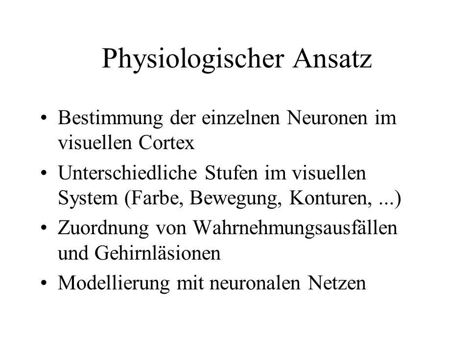 Physiologischer Ansatz Bestimmung der einzelnen Neuronen im visuellen Cortex Unterschiedliche Stufen im visuellen System (Farbe, Bewegung, Konturen,..