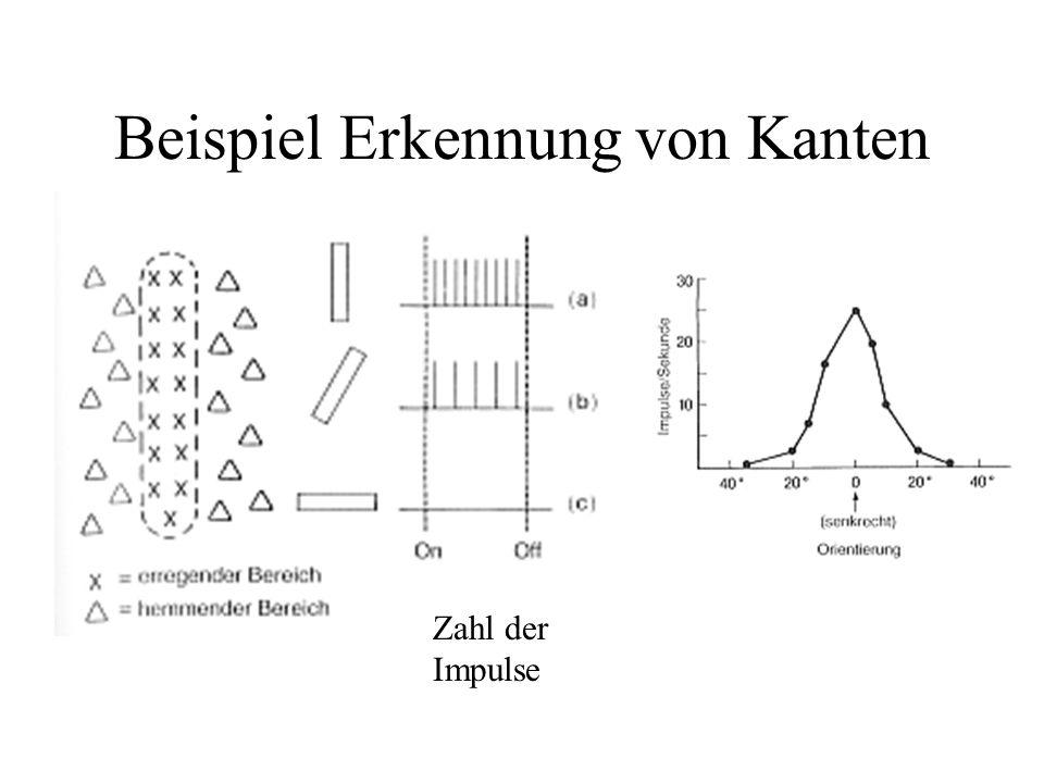 Beispiel Erkennung von Kanten Zahl der Impulse