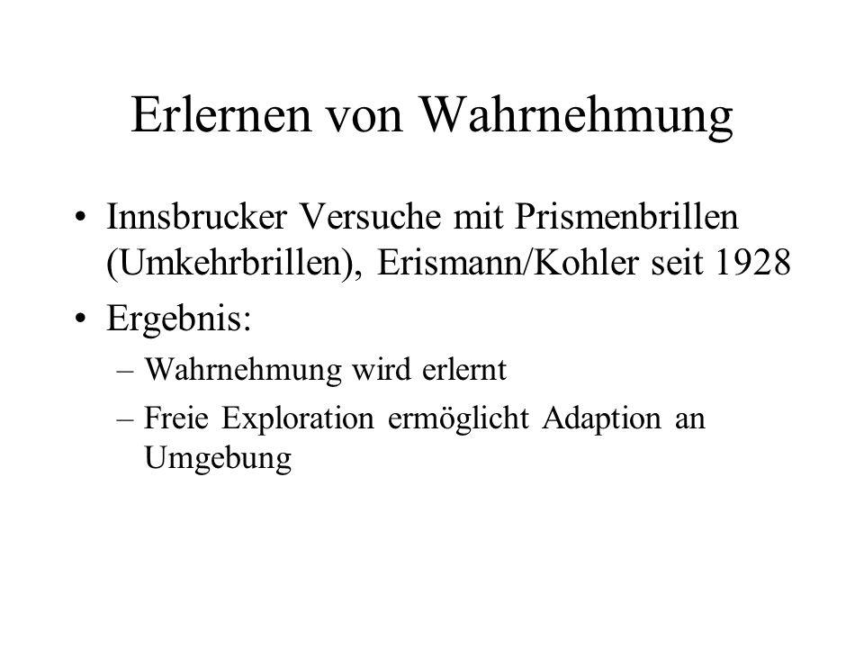Erlernen von Wahrnehmung Innsbrucker Versuche mit Prismenbrillen (Umkehrbrillen), Erismann/Kohler seit 1928 Ergebnis: –Wahrnehmung wird erlernt –Freie