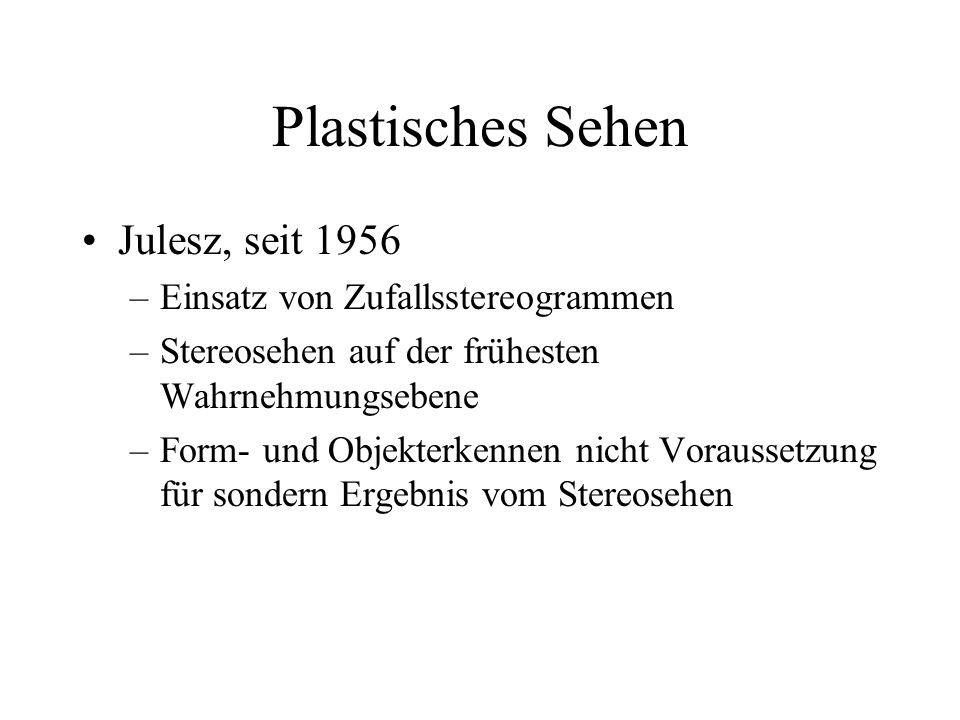 Plastisches Sehen Julesz, seit 1956 –Einsatz von Zufallsstereogrammen –Stereosehen auf der frühesten Wahrnehmungsebene –Form- und Objekterkennen nicht