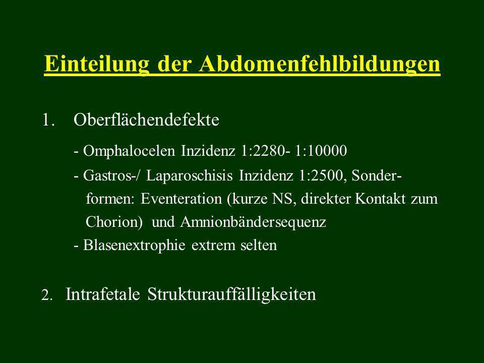 Einteilung der Abdomenfehlbildungen 1.Oberflächendefekte - Omphalocelen Inzidenz 1:2280- 1:10000 - Gastros-/ Laparoschisis Inzidenz 1:2500, Sonder- fo