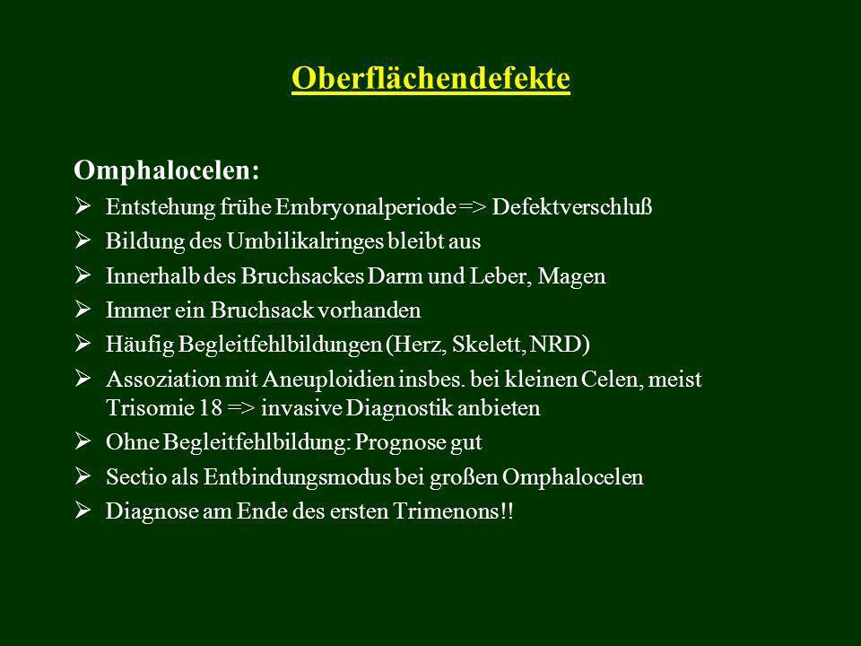 Oberflächendefekte Omphalocelen:  Entstehung frühe Embryonalperiode => Defektverschluß  Bildung des Umbilikalringes bleibt aus  Innerhalb des Bruch