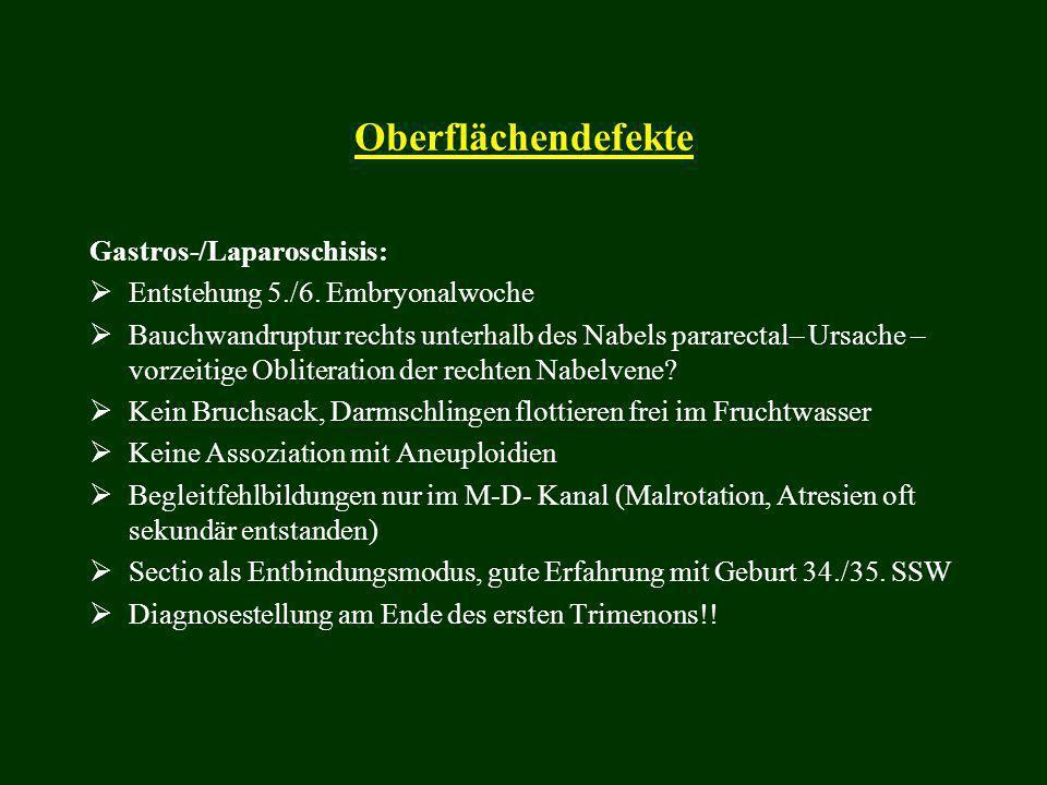 Oberflächendefekte Gastros-/Laparoschisis:  Entstehung 5./6. Embryonalwoche  Bauchwandruptur rechts unterhalb des Nabels pararectal– Ursache – vorze