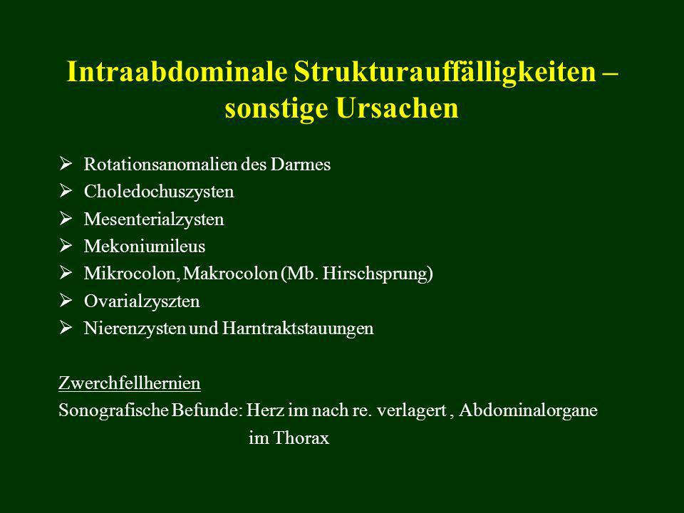 Intraabdominale Strukturauffälligkeiten – sonstige Ursachen  Rotationsanomalien des Darmes  Choledochuszysten  Mesenterialzysten  Mekoniumileus 