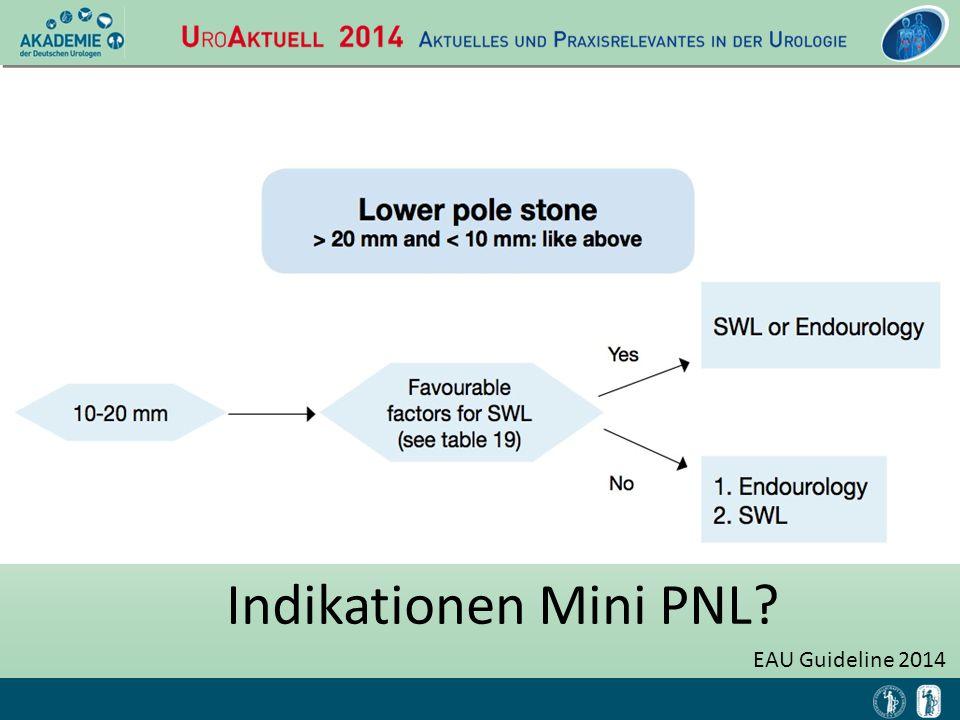 EAU Guideline 2014 Indikationen Mini PNL?