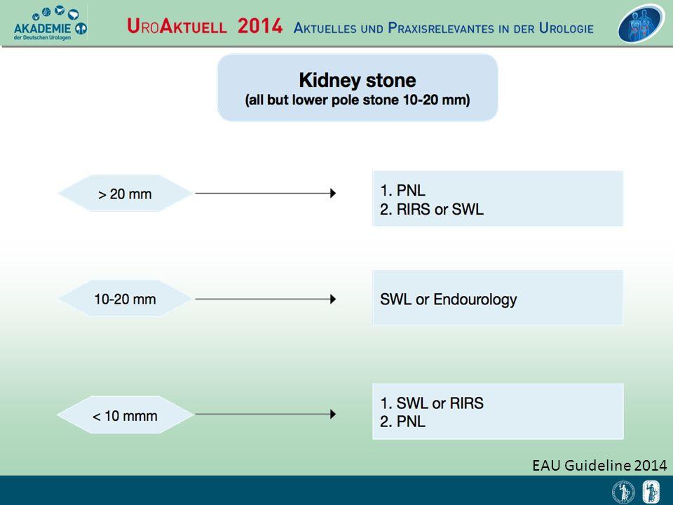 EAU Guideline 2014
