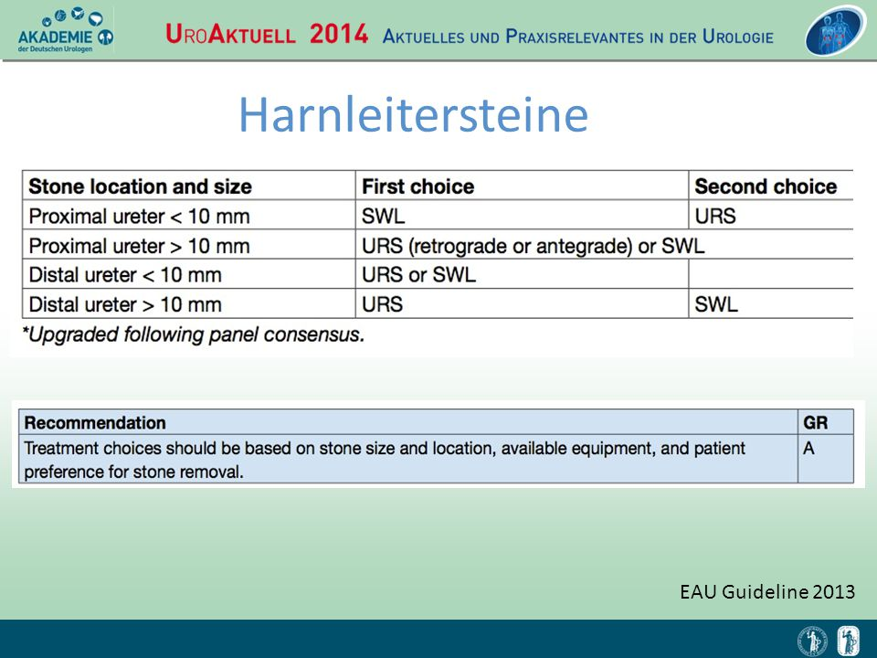 EAU Guideline 2013 Harnleitersteine