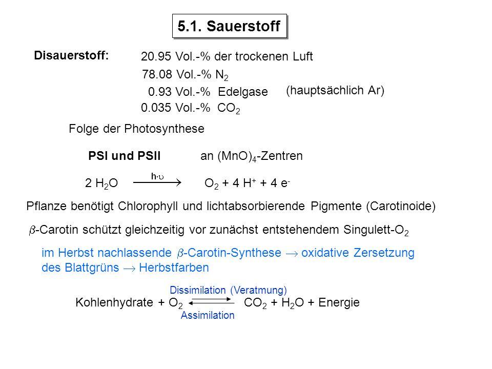 Disauerstoff: 20.95 Vol.-% der trockenen Luft 78.08 Vol.-% N 2 0.93 Vol.-% Edelgase 0.035 Vol.-% CO 2 Folge der Photosynthese PSI und PSII 2 H 2 OO 2 + 4 H + + 4 e - Pflanze benötigt Chlorophyll und lichtabsorbierende Pigmente (Carotinoide)  -Carotin schützt gleichzeitig vor zunächst entstehendem Singulett-O 2 im Herbst nachlassende  -Carotin-Synthese  oxidative Zersetzung des Blattgrüns  Herbstfarben 5.1.