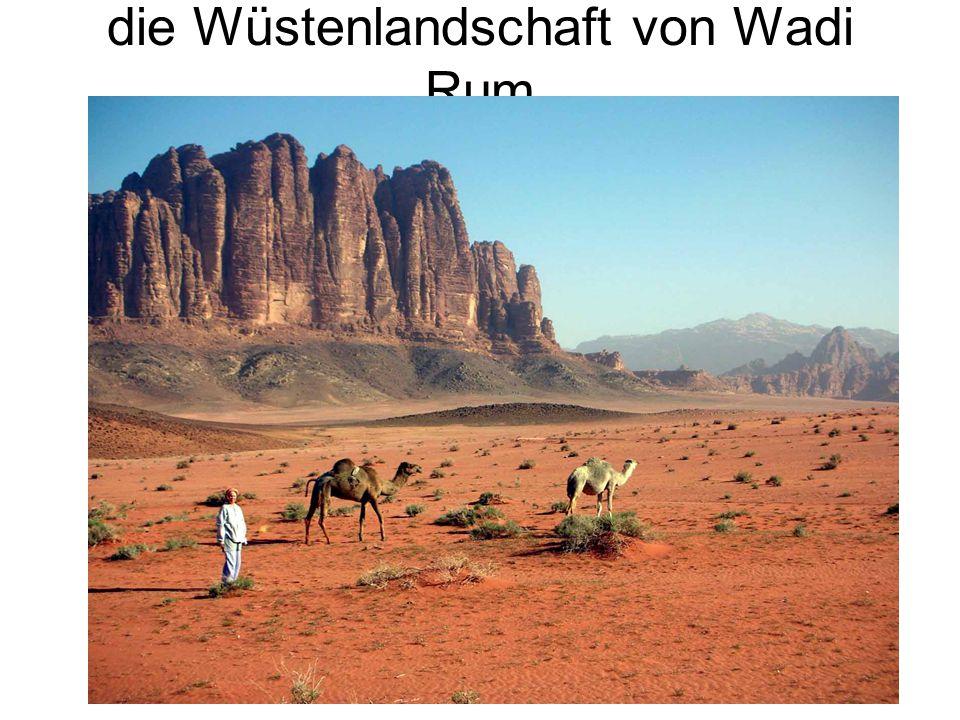 die Wüstenlandschaft von Wadi Rum