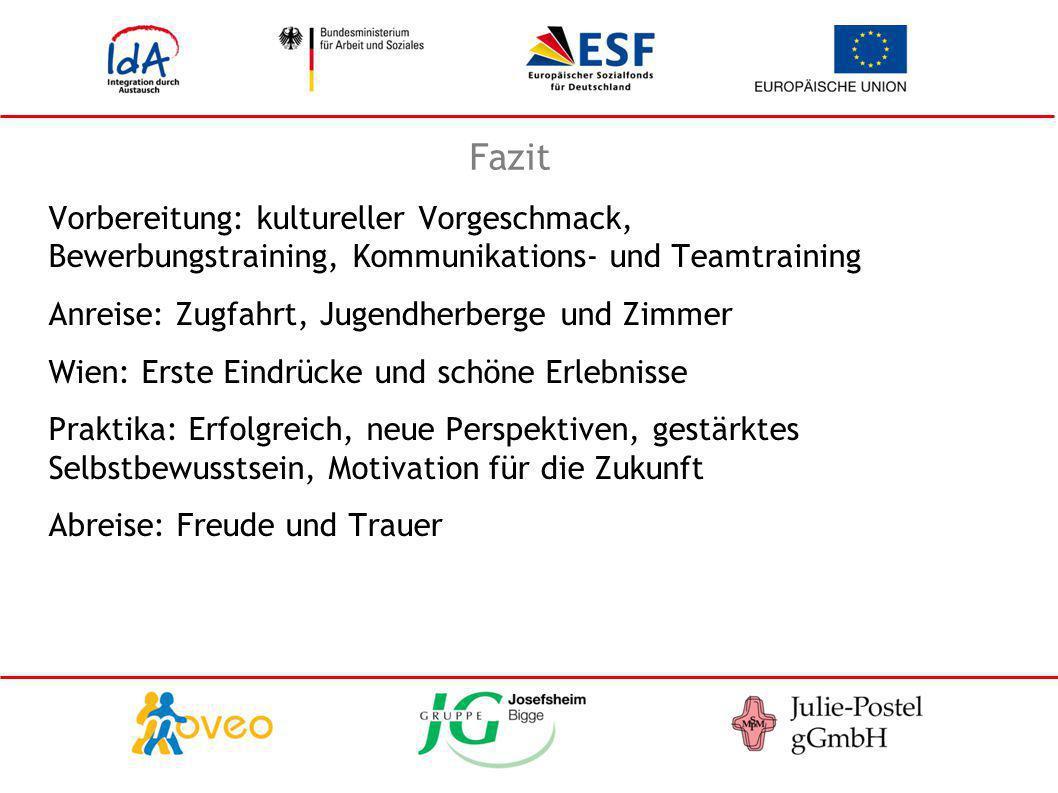 Fazit Vorbereitung: kultureller Vorgeschmack, Bewerbungstraining, Kommunikations- und Teamtraining Anreise: Zugfahrt, Jugendherberge und Zimmer Wien: