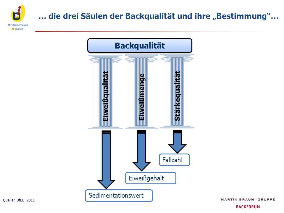 """… die drei Säulen der Backqualität und ihre """"Bestimmung … Quelle: BfEL,2011 Backqualität Eiweißqualität Eiweißmenge Stärkequalität Sedimentationswert Eiweißgehalt Fallzahl"""