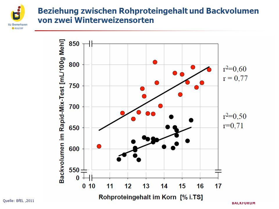 Beziehung zwischen Rohproteingehalt und Backvolumen von zwei Winterweizensorten Quelle: BfEL,2011