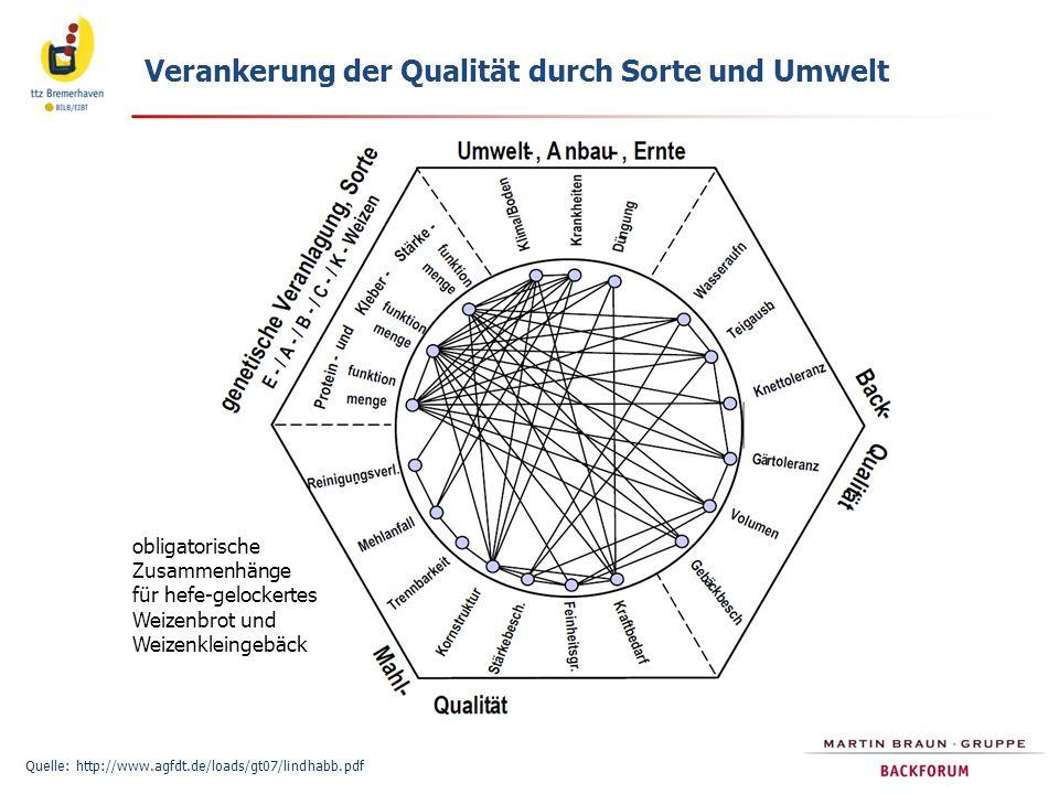 Verankerung der Qualität durch Sorte und Umwelt Quelle: http://www.agfdt.de/loads/gt07/lindhabb.pdf obligatorische Zusammenhänge für hefe-gelockertes