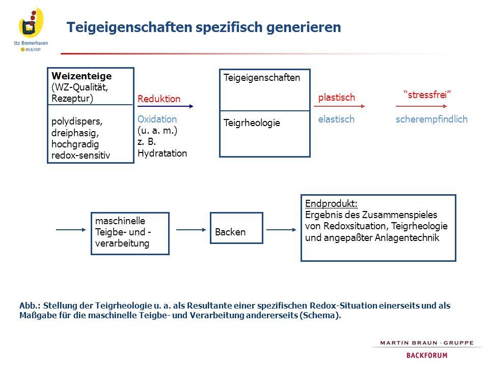 Abb.: Stellung der Teigrheologie u. a. als Resultante einer spezifischen Redox-Situation einerseits und als Maßgabe für die maschinelle Teigbe- und Ve