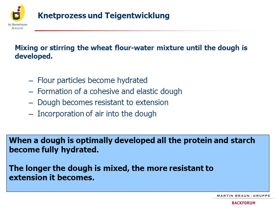 Mixing or stirring the wheat flour-water mixture until the dough is developed. – Flour particles become hydrated – Formation of a cohesive and elastic