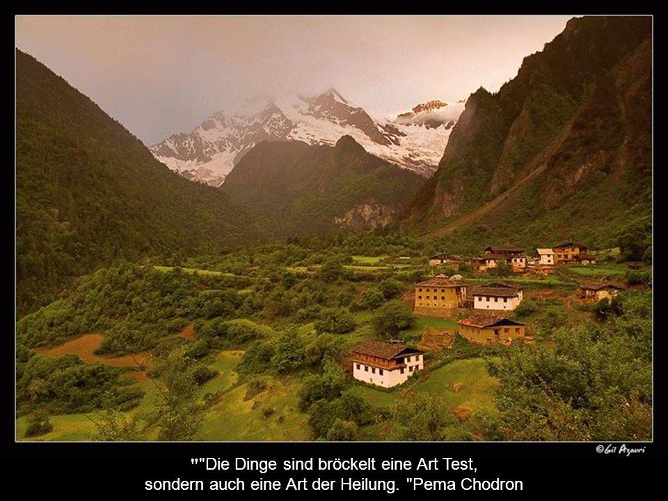 Wir sollten jeden Morgen für die ersten Gedanken zu haben Wunsch, den Tag, der das Wohlergehen aller zu widmen beginnt Khyentse Rinpoche