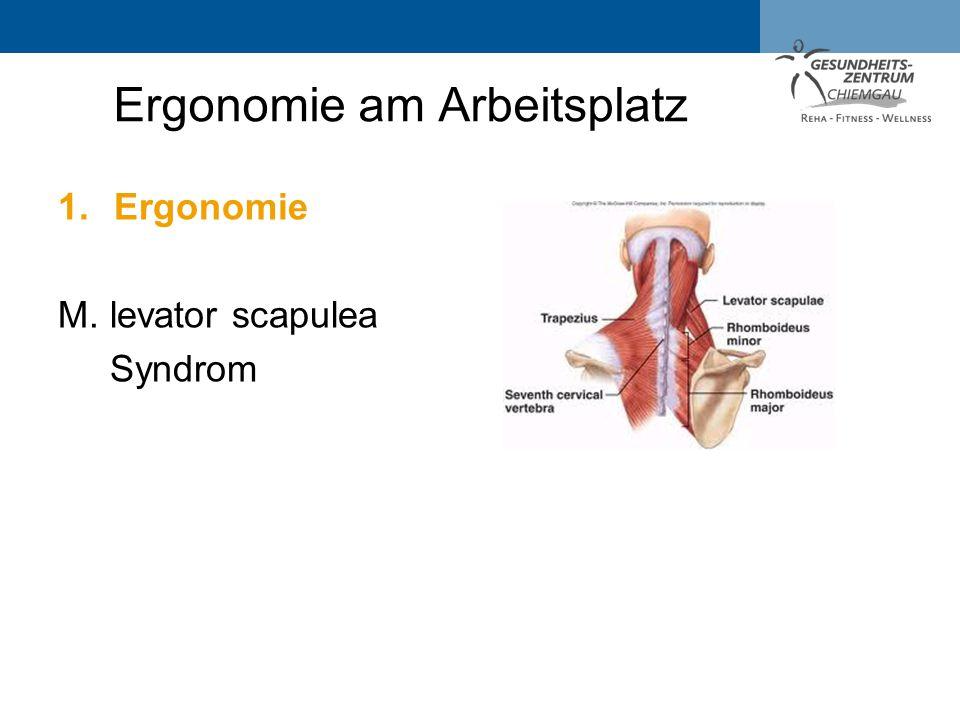 1.Ergonomie M. levator scapulea Syndrom Ergonomie am Arbeitsplatz