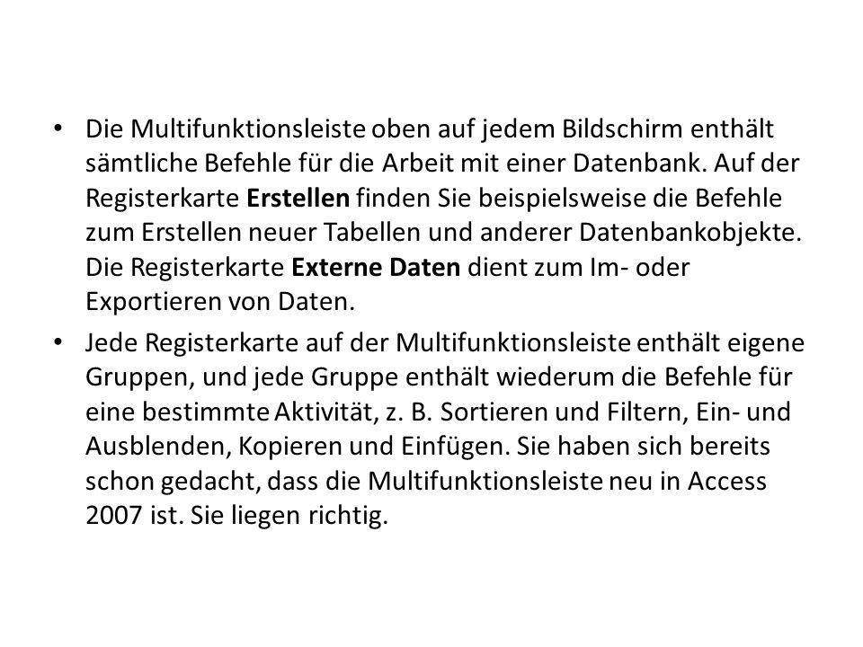 Die Multifunktionsleiste oben auf jedem Bildschirm enthält sämtliche Befehle für die Arbeit mit einer Datenbank.