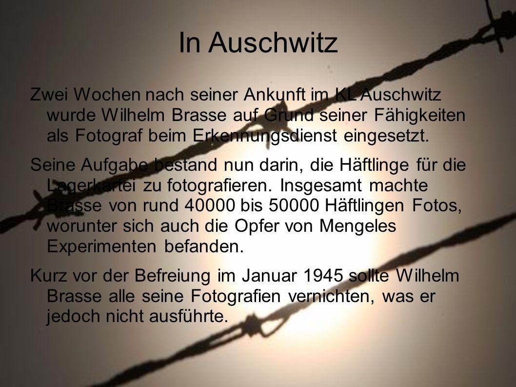 In Auschwitz Zwei Wochen nach seiner Ankunft im KL Auschwitz wurde Wilhelm Brasse auf Grund seiner Fähigkeiten als Fotograf beim Erkennungsdienst eingesetzt.