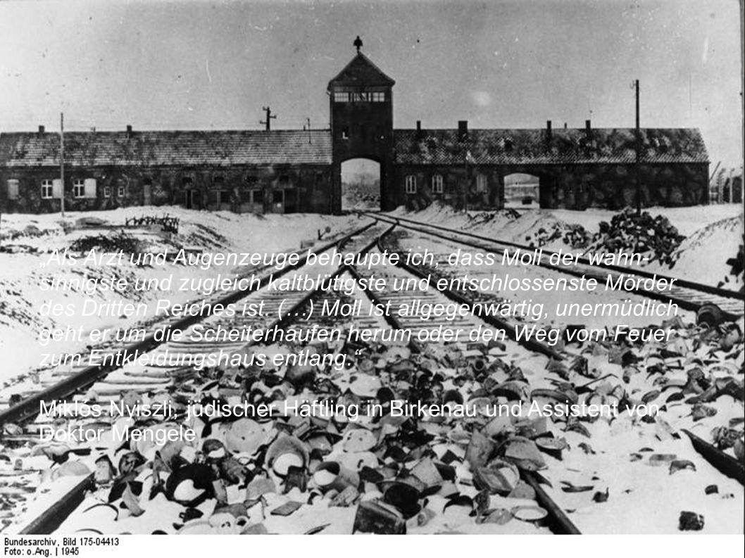 """""""Als Arzt und Augenzeuge behaupte ich, dass Moll der wahnsinnigste und zugleich kaltblütigste und entschlossenste Mörder des Dritten Reiches ist."""