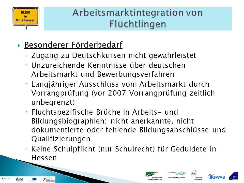  Besonderer Förderbedarf ◦ Zugang zu Deutschkursen nicht gewährleistet ◦ Unzureichende Kenntnisse über deutschen Arbeitsmarkt und Bewerbungsverfahren