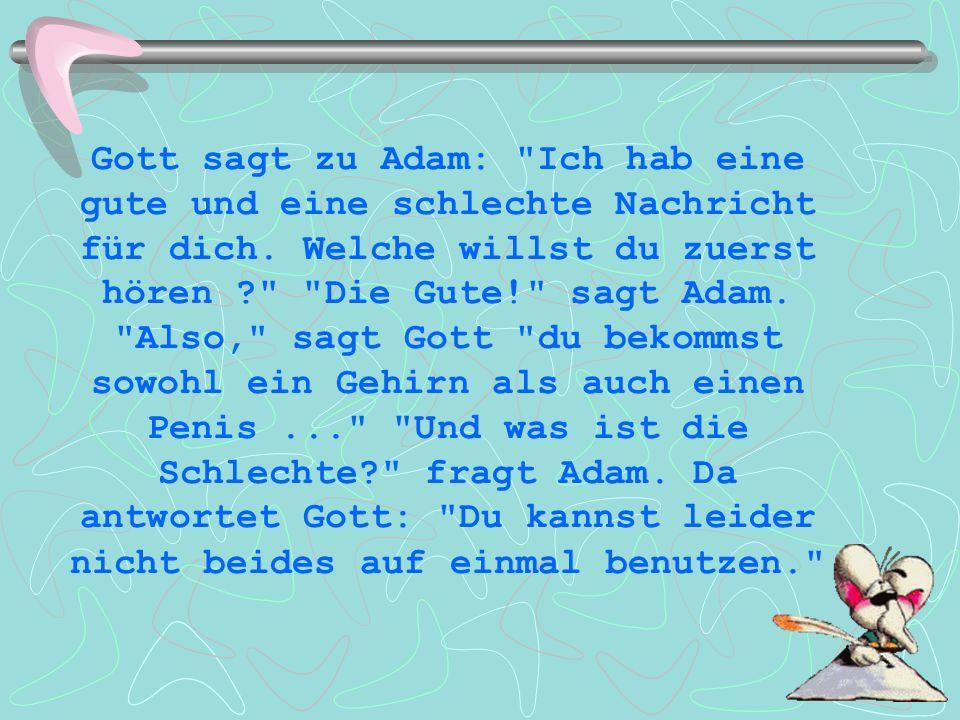 Gott sagt zu Adam:
