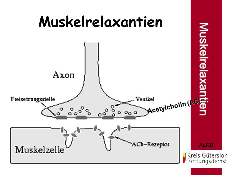 ÄLRD Muskelrelaxantien Acetylcholin (ACh) Muskelrelaxantien
