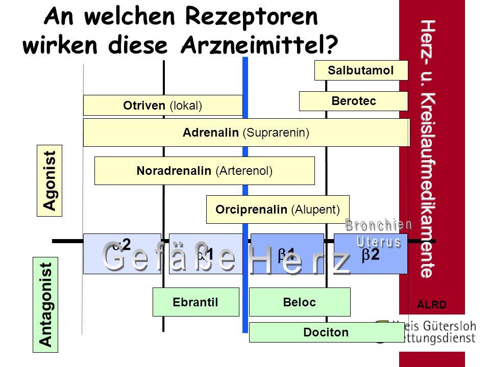 ÄLRD An welchen Rezeptoren wirken diese Arzneimittel? Agonist Antagonist Adrenalin (Suprarenin) Otriven (lokal) Berotec EbrantilBeloc Dociton 22 1