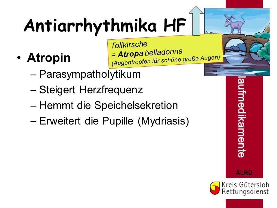 ÄLRD Antiarrhythmika HF Atropin –Parasympatholytikum –Steigert Herzfrequenz –Hemmt die Speichelsekretion –Erweitert die Pupille (Mydriasis) Herz- u. K