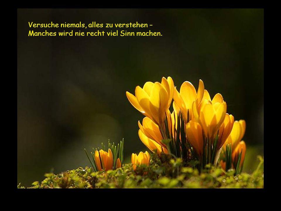 """Weiter mit Mausklick Music by Enya · Titel: """"A day without rain"""" (Instrumental) Niemals...."""