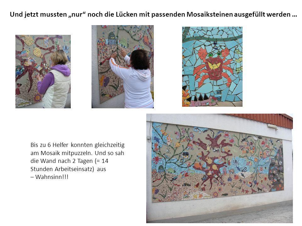 """Und jetzt mussten """"nur"""" noch die Lücken mit passenden Mosaiksteinen ausgefüllt werden … Bis zu 6 Helfer konnten gleichzeitig am Mosaik mitpuzzeln. Und"""