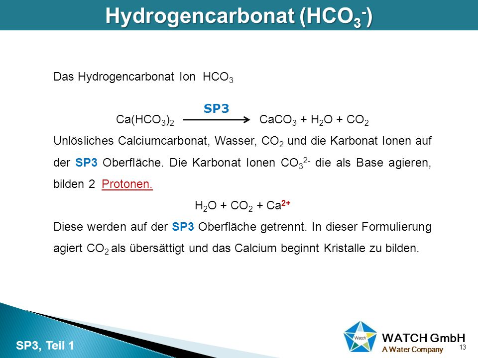WATCH GmbH A Water Company Hydrogencarbonat (HCO 3 - ) Das Hydrogencarbonat Ion HCO 3 Ca(HCO 3 ) 2 CaCO 3 + H 2 O + CO 2 Unlösliches Calciumcarbonat,