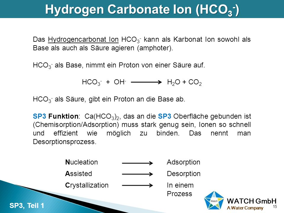WATCH GmbH A Water Company Hydrogen Carbonate Ion (HCO 3 - ) Das Hydrogencarbonat Ion HCO 3 - kann als Karbonat Ion sowohl als Base als auch als Säure