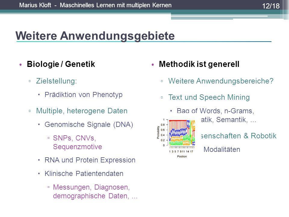 Marius Kloft - Maschinelles Lernen mit multiplen Kernen Methodik ist generell ▫ Weitere Anwendungsbereiche? ▫ Text und Speech Mining  Bag of Words, n