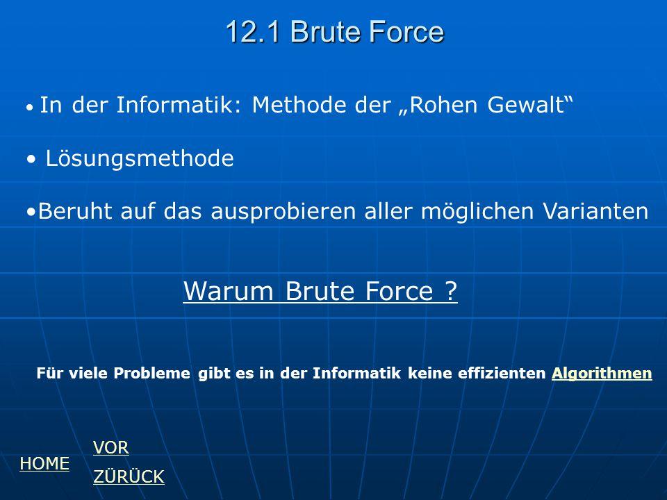 """12.1 Brute Force In der Informatik: Methode der """"Rohen Gewalt"""" Lösungsmethode Beruht auf das ausprobieren aller möglichen Varianten Warum Brute Force"""