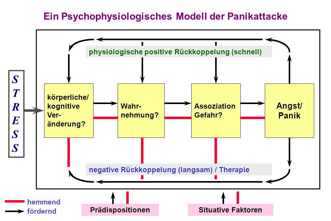 Ein Psychophysiologisches Modell der Panikattacke körperliche/ kognitive Ver- änderung? Wahr- nehmung? Assoziation Gefahr? Angst/ Panik STRESSSTRESS p