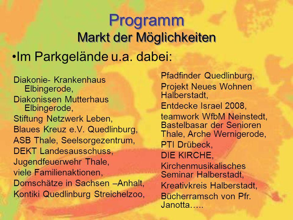 Diakonie- Krankenhaus Elbingerode, Diakonissen Mutterhaus Elbingerode, Stiftung Netzwerk Leben, Blaues Kreuz e.V.