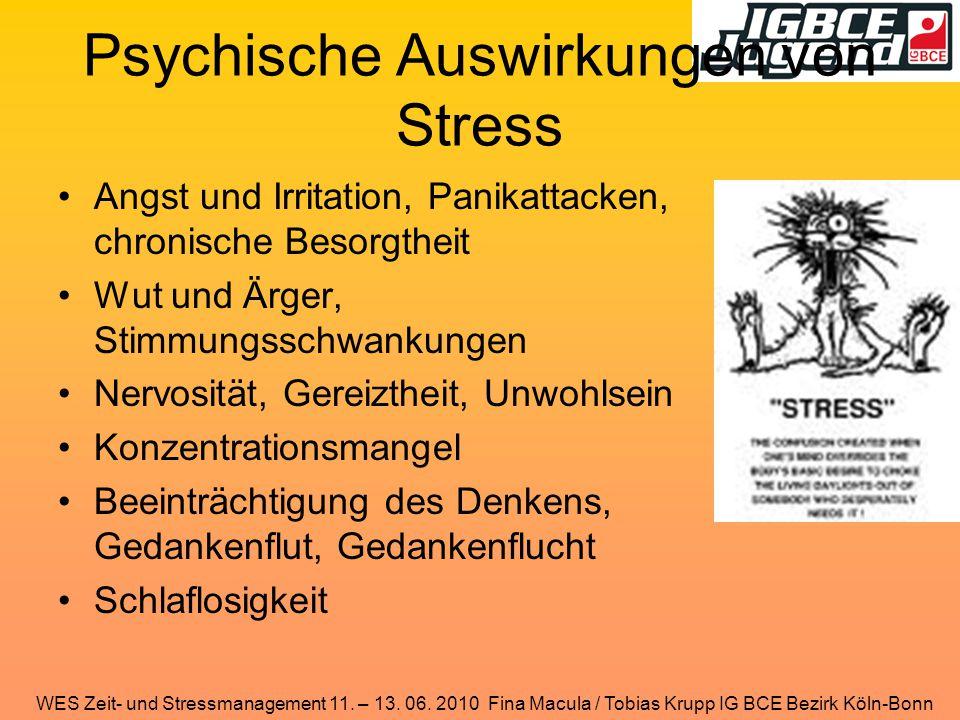 WES Zeit- und Stressmanagement 11. – 13. 06. 2010 Fina Macula / Tobias Krupp IG BCE Bezirk Köln-Bonn Psychische Auswirkungen von Stress Angst und Irri